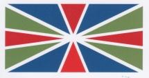 UB Flag HW